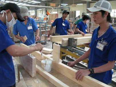 Gỗ nguyên liệu tăng, doanh nghiệp gỗ gặp khó